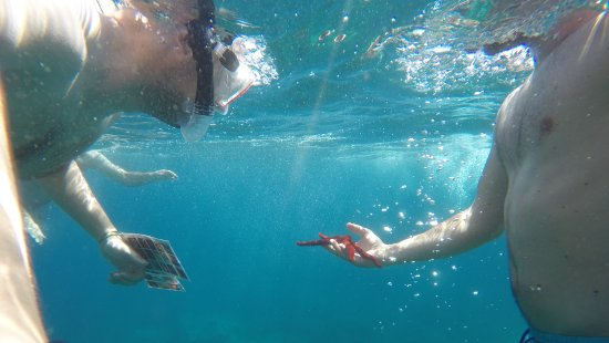 Zafferana Etnea, Italia: snorkeling catania