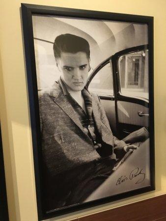 Westwood照片