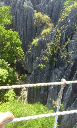 Tsingy de Bemaraha Strict Nature Reserve: Green and Grey