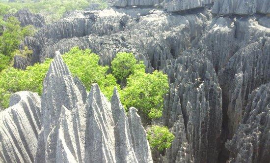 Tsingy de Bemaraha Strict Nature Reserve: Beautiful View