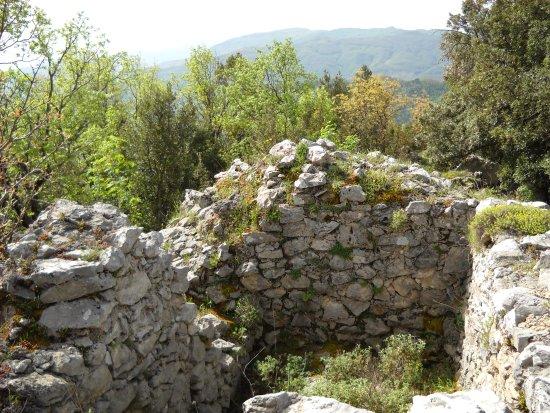 Acquaformosa, إيطاليا: Ruderi di Artemisia