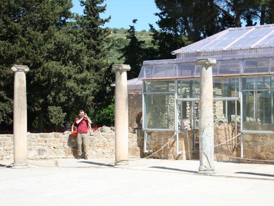La Villa Romana del Casale | Piazza Armerina, Sicily