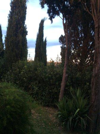 Podere Villa Bassa: photo7.jpg