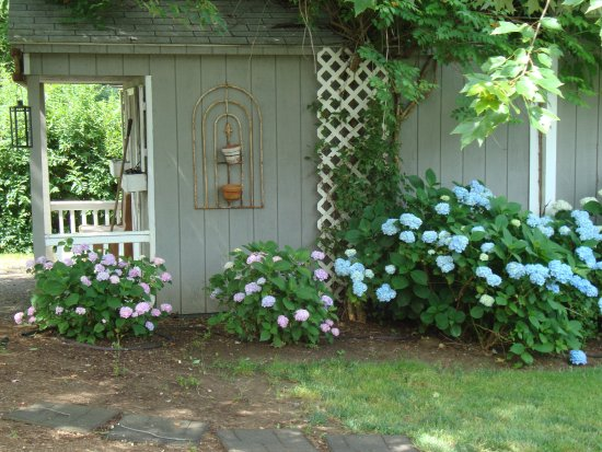Meadow Gardens Bed and Breakfast Image