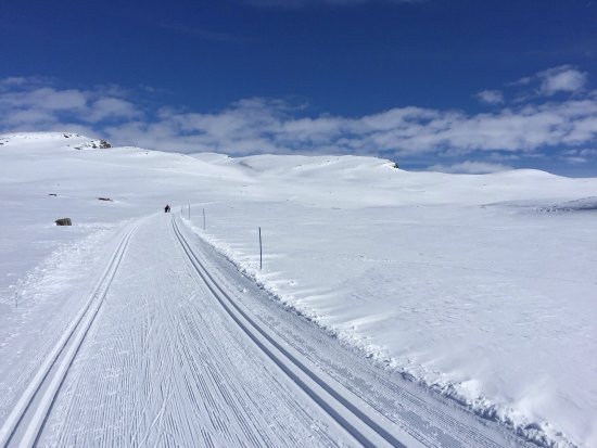 Hovden, Norway: Extremely nice cross country tracks