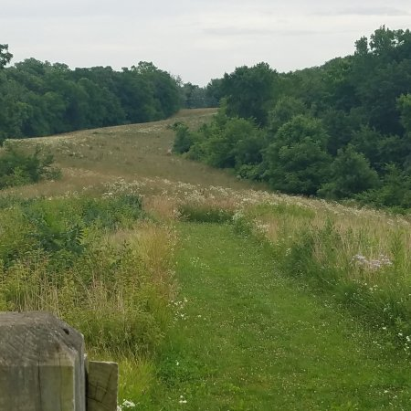 Savanna, IL : Prairie View Trail