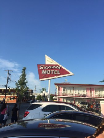 Skylark Resort Motel: photo0.jpg