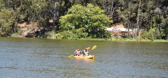 Los Gatos, CA: Best place to be under the Sun in summer is on the waters!