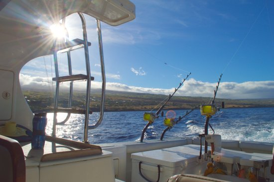 Kawaihae, Havai: The boat is gorgeous!