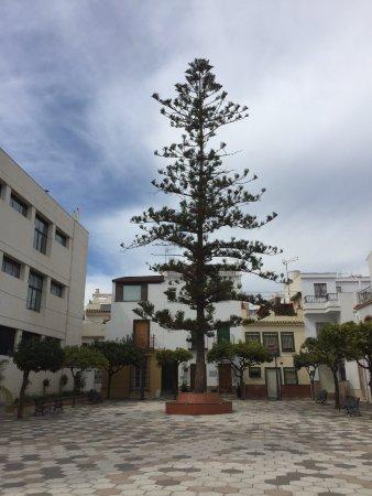 Plaza del Reloj: Площадь