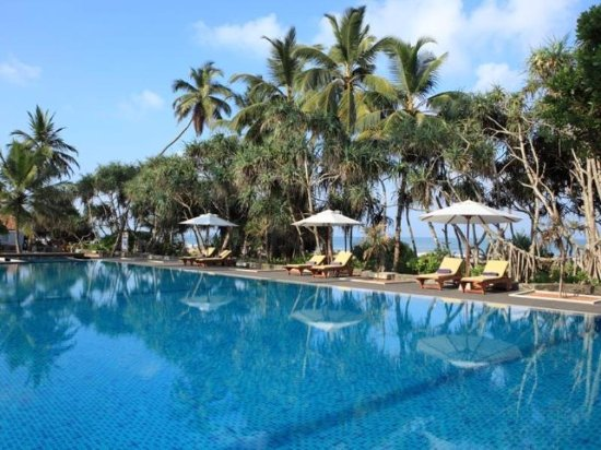 AVANI Bentota Resort & Spa: this photo pool and beautiful beach view garden