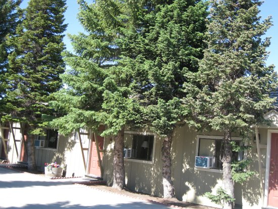 Alpine Motel Foto
