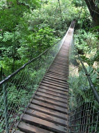 Atitlan Nature Reserve: photo0.jpg