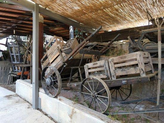 Subirats, Ισπανία: IMG_20160716_104630_large.jpg