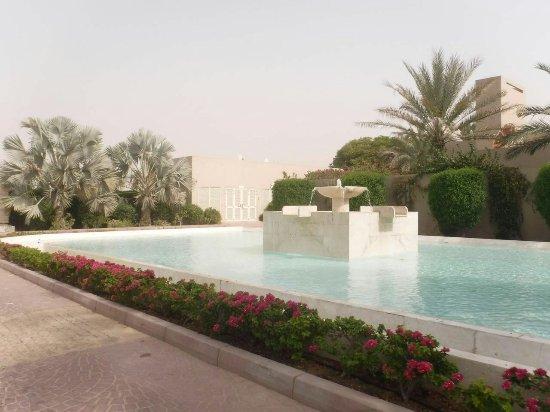 Desert Palm PER AQUUM: IMG-20160716-WA0032_large.jpg