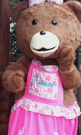 Tullow, Irlanda: mammy bear