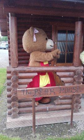 Tullow, Irlanda: daddy bear