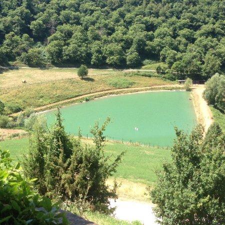 Fattoria Il Lago : photo6.jpg