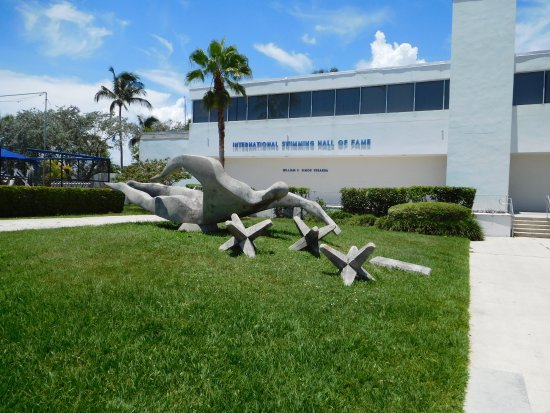 Main swimming pool picture of international swimming hall of fame fort lauderdale tripadvisor for International swimming hall of fame pool