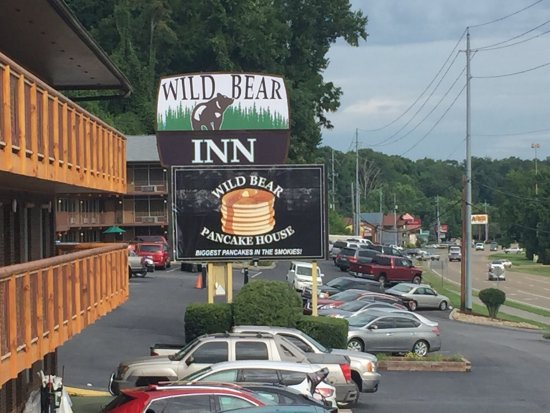 Wild Bear Inn: photo0.jpg