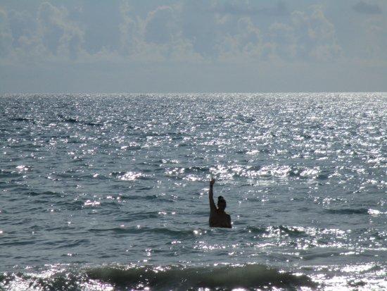 Hutchinson Island, FL: Water 84 degrees .