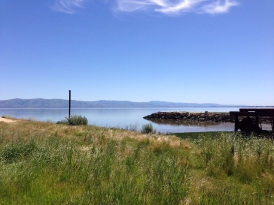 East Palo Alto, كاليفورنيا: View of SF Bay from Cooley Landing