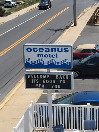 Oceanus Motel: photo9.jpg