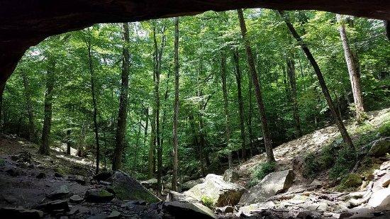 Bilde fra Huntsville