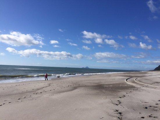 Whakatane, Nowa Zelandia: photo0.jpg