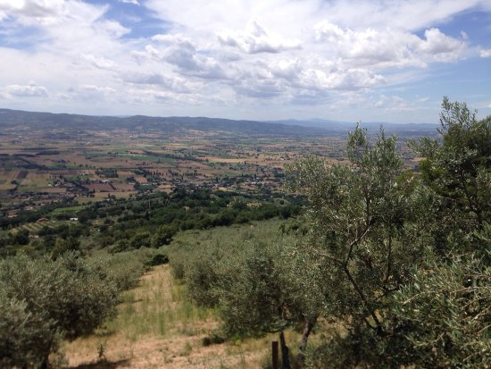 Le Mandrie di San Paolo: Fairytale views from the agriturismo's location high on an Umbrian hill.  Excellent house wine m
