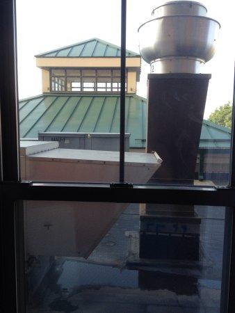 hilton garden inn albany medical center photo0jpg - Hilton Garden Inn Albany Medical Center