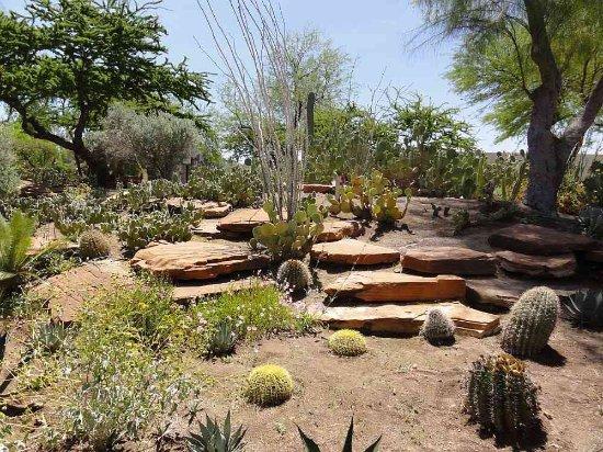 Superbe Ethel M Chocolates Factory And Cactus Garden: Photo5