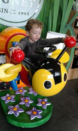 Havelock North, New Zealand: My Aussie Grandson on the Buzy Bee icon
