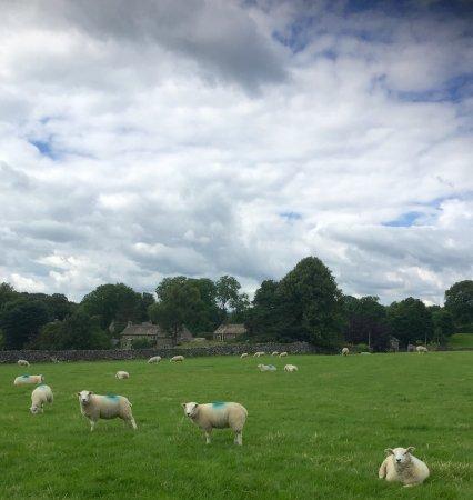 Linton-in-Craven, UK: photo1.jpg