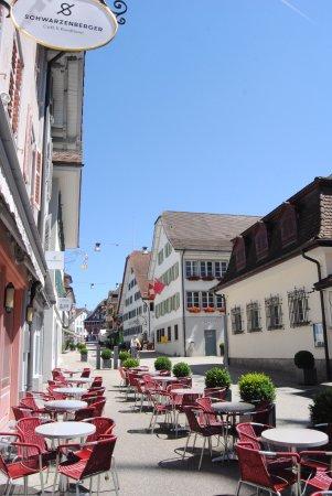 Kuessnacht am Rigi, Switzerland: La rue piétone très agréable où se trouve l hôtel.