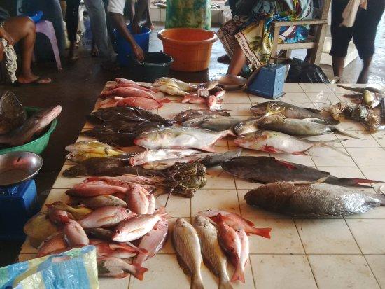 Hotel du Phare : A proximité, débarquadère et marché au poissons le matin