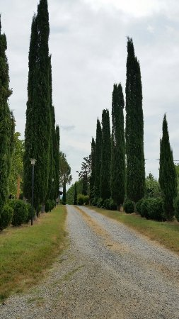 Vicchio, Italia: B&B stay, a couple exploring Tuscan countryside