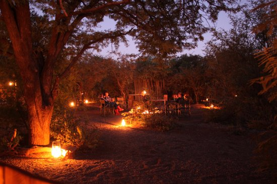 Mosetlha Bush Camp & Eco Lodge: Bush camp in early evening