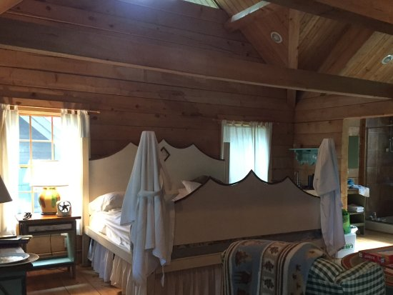 West Union, OH: Main room of King cabin. VERY comfortable bed.