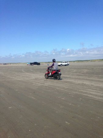 Ocean Shores, WA: download_20160715_163028_large.jpg