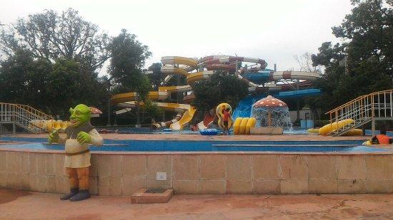 Pinjore, อินเดีย: P_20160716_152749_LL_large.jpg