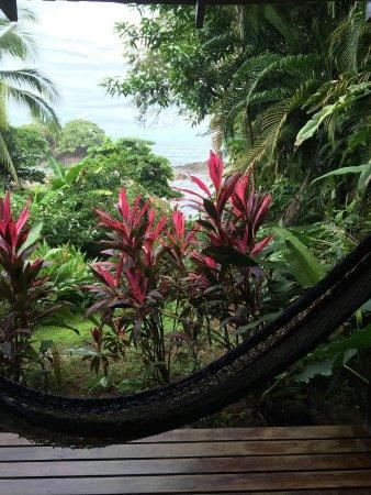 Costa Paraiso: IMG-20160717-WA0003_large.jpg