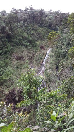 Dipartimento di Risaralda, Colombia: 20160703_120415_large.jpg