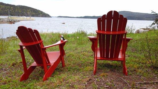 Glovertown, Canadá: Terra Nova