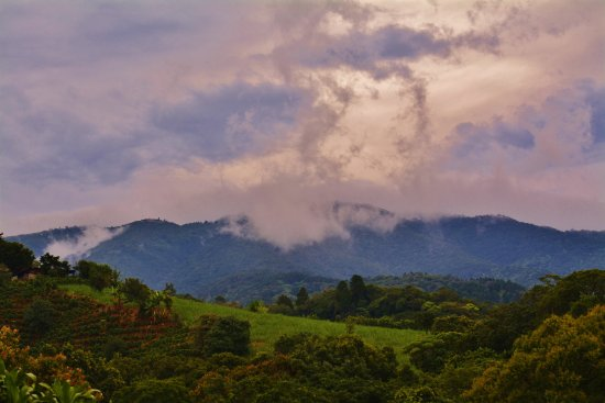 Grecia, Costa Rica: View of the falley from the parking lot