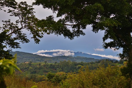 Grecia, Costa Rica: morning view from the driveway