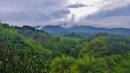 Grecia, Costa Rica: Mango Valley am view