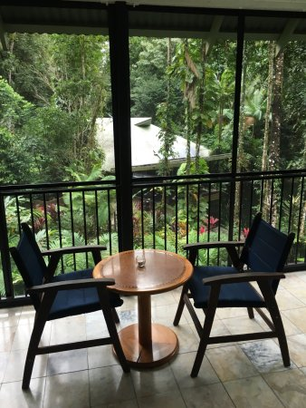 Daintree EcoLodge & Spa: Loving life...