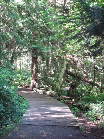 Nanaimo, Canada: Cable Bay trail