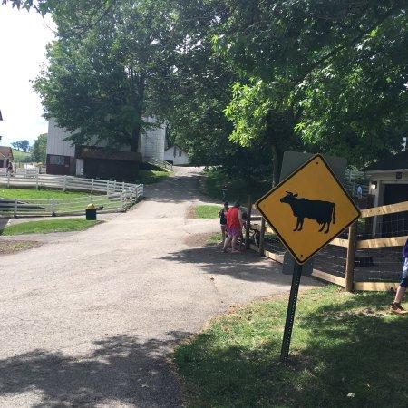 Elizabeth, Pensilvania: Round Hill Park